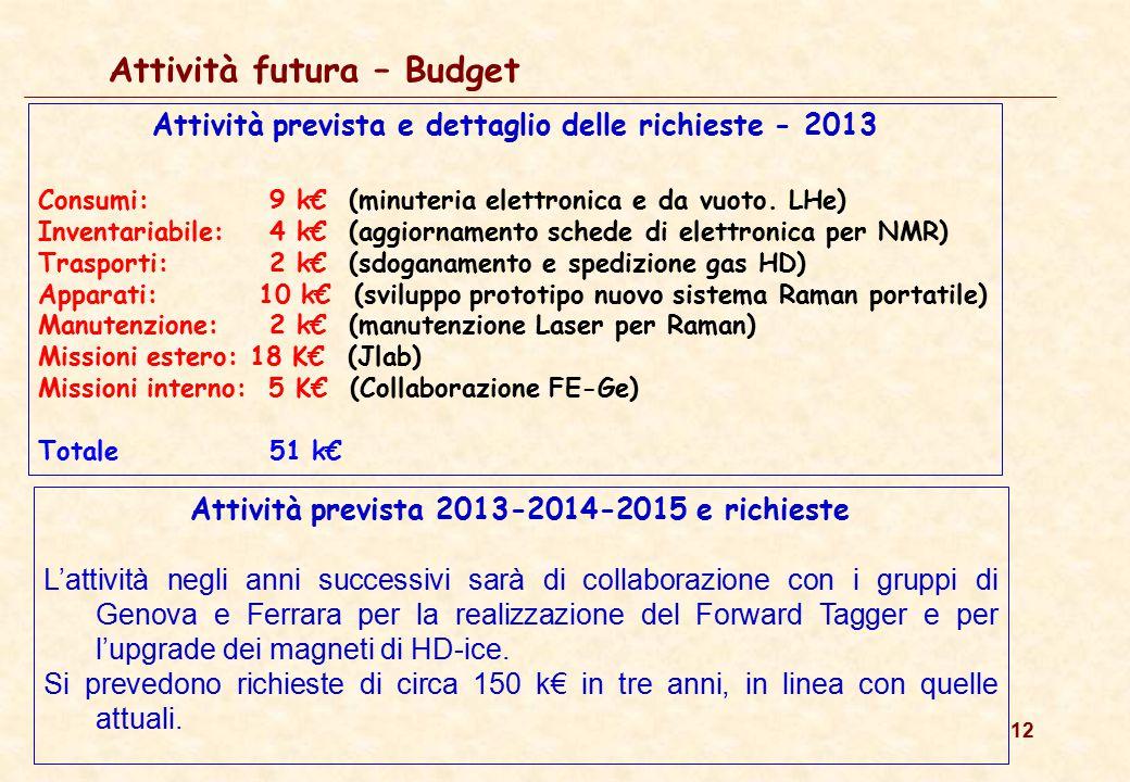 12 Attività futura – Budget Attività prevista e dettaglio delle richieste - 2013 Consumi: 9 k€ (minuteria elettronica e da vuoto. LHe) Inventariabile: