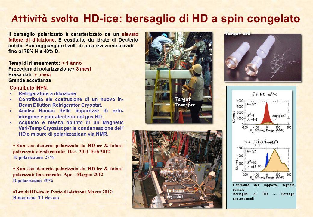 6 Attività svolta HD-ice: bersaglio di HD a spin congelato Il bersaglio polarizzato è caratterizzato da un elevato fattore di diluizione. È costituito