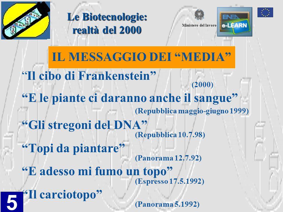 COMMISSIONE EUROPEA CRESCITA, COMPETITIVITA', OCCUPAZIONE LE SFIDE E LE VIE DA PERCORRERE PER ENTRARE NEL XXI SECOLO Libro bianco di Delors (1994) Settori individuati: LA SOCIETA' DELL'INFORMAZIONE BIOTECNOLOGIA E SUA DIFFUSIONE IL SETTORE AUDIOVISIVO Le Biotecnologie: realtà del 2000 Ministero del lavoro 6