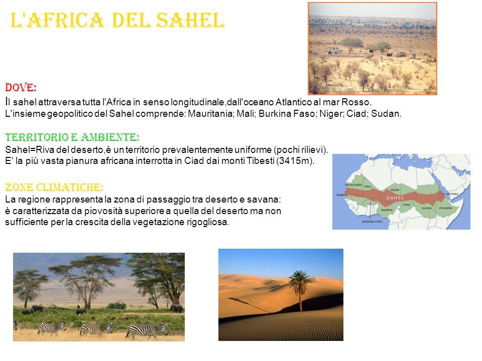 L'africa del Sahel D OVE: I l sahel attraversa tutta l'Africa in senso longitudinale,dall'oceano Atlantico al mar Rosso. L'insieme geopolitico del Sah