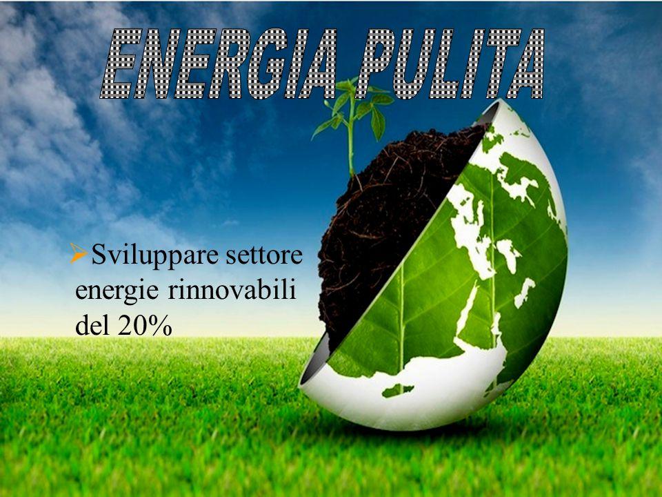  Sviluppare settore energie rinnovabili del 20%