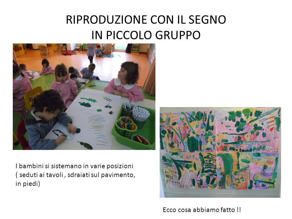 Altri esempi di lavoro differenziato Dall'uscita all'oliveto… si osservano le olive, si disegnano i rametti, si riproducono con la creta e si pittura a piccolo gruppo…