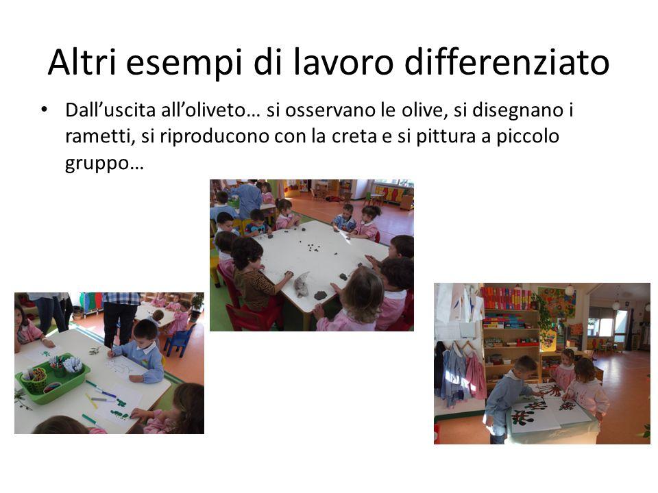Altri esempi di lavoro differenziato Dall'uscita all'oliveto… si osservano le olive, si disegnano i rametti, si riproducono con la creta e si pittura