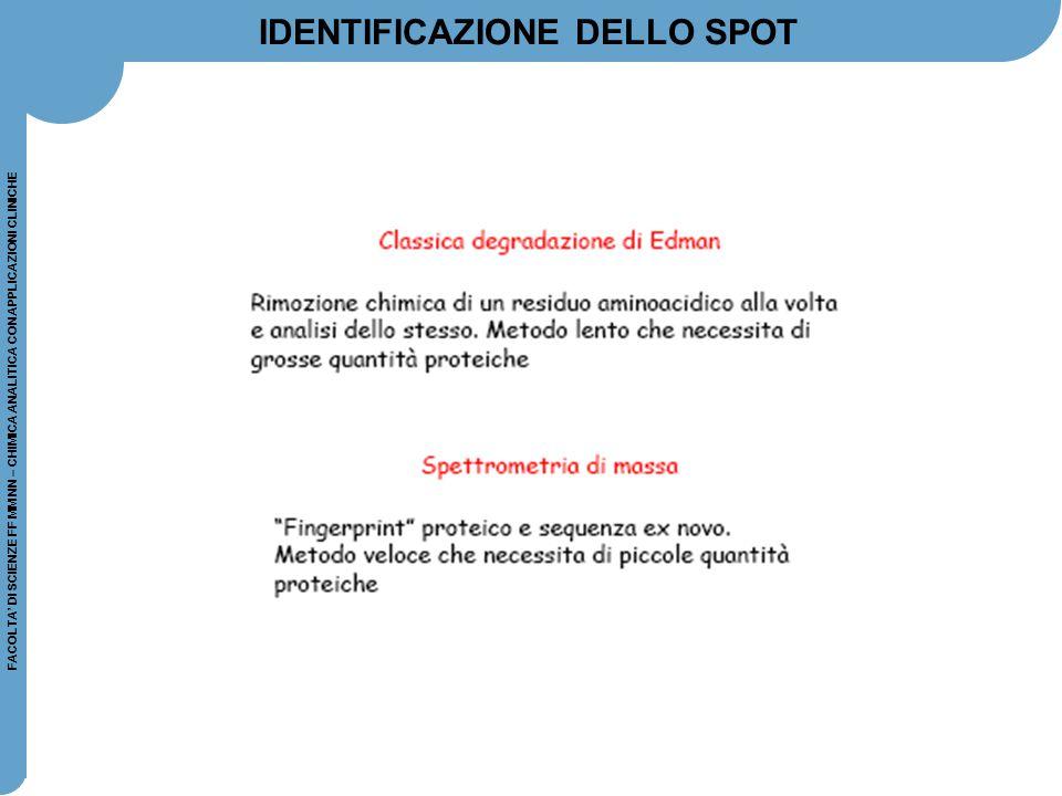 FACOLTA' DI SCIENZE FF MM NN – CHIMICA ANALITICA CON APPLICAZIONI CLINICHE IDENTIFICAZIONE DELLO SPOT