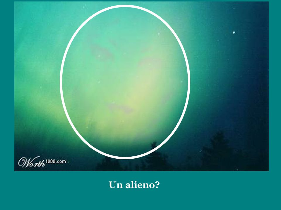Un alieno?