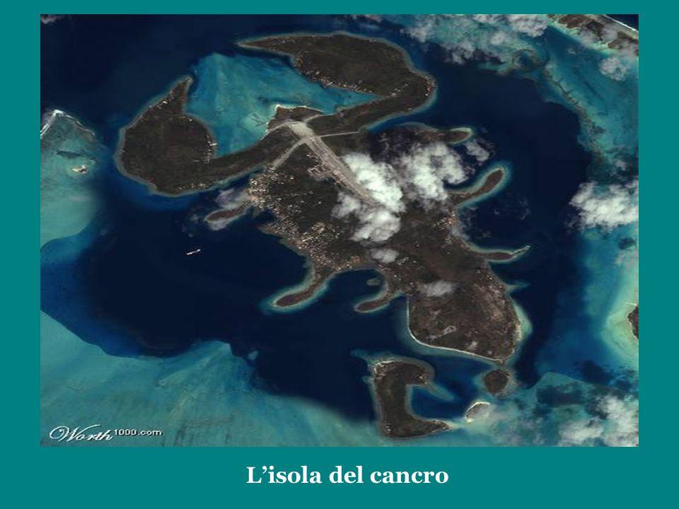 L'isola del cancro