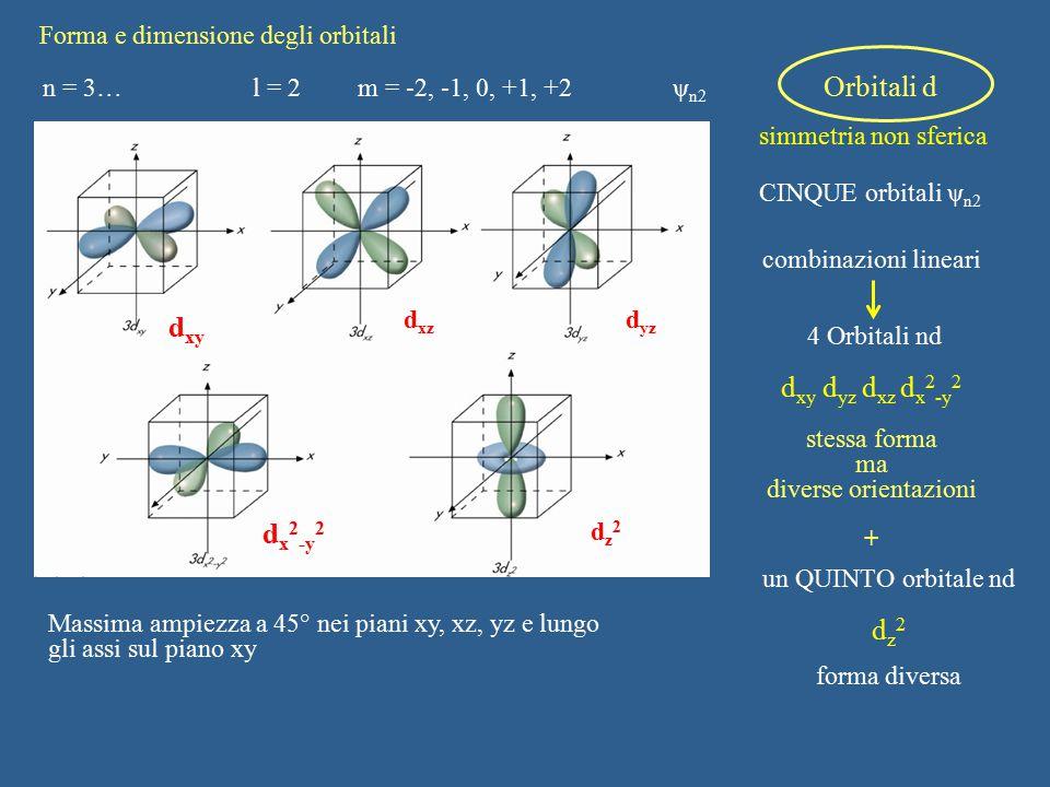 Forma e dimensione degli orbitali n = 3…l = 2m = -2, -1, 0, +1, +2ψ n2 Orbitali d simmetria non sferica CINQUE orbitali ψ n2 combinazioni lineari 4 Or