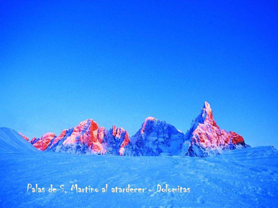 Palas de S. Martino al atardecer - Dolomitas