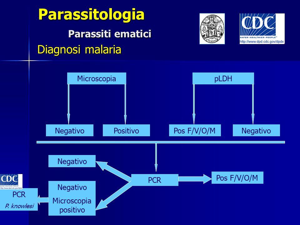 Parassitologia Parassiti ematici Diagnosi malaria Microscopia Negativo pLDH PositivoPos F/V/O/MNegativo PCR Negativo Microscopia positivo Pos F/V/O/M