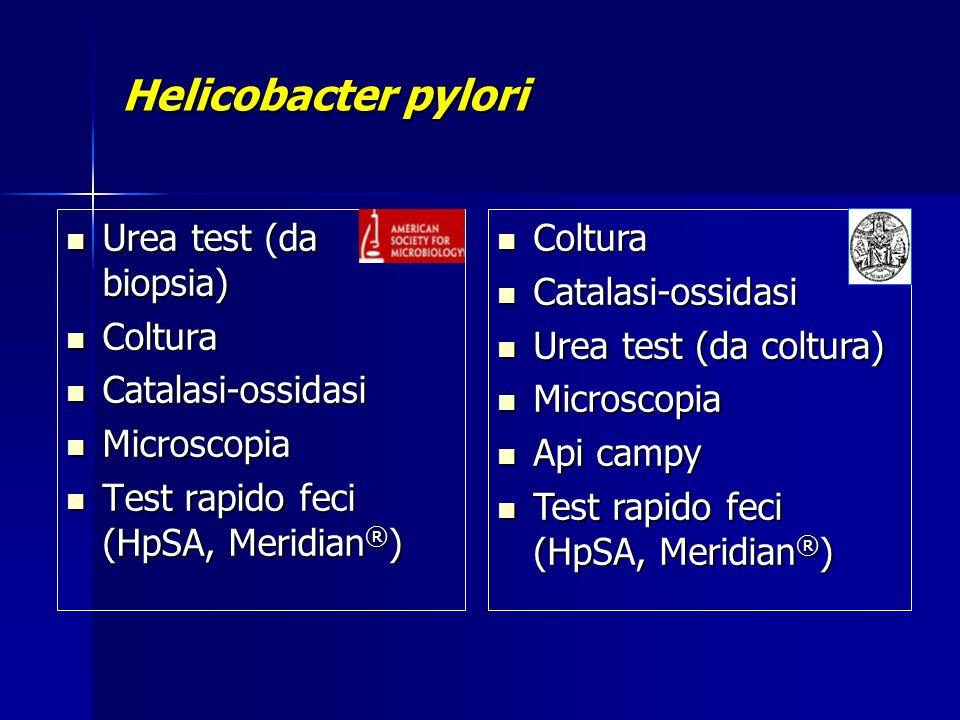 Helicobacter pylori Urea test (da biopsia) Urea test (da biopsia) Coltura Coltura Catalasi-ossidasi Catalasi-ossidasi Microscopia Microscopia Test rap