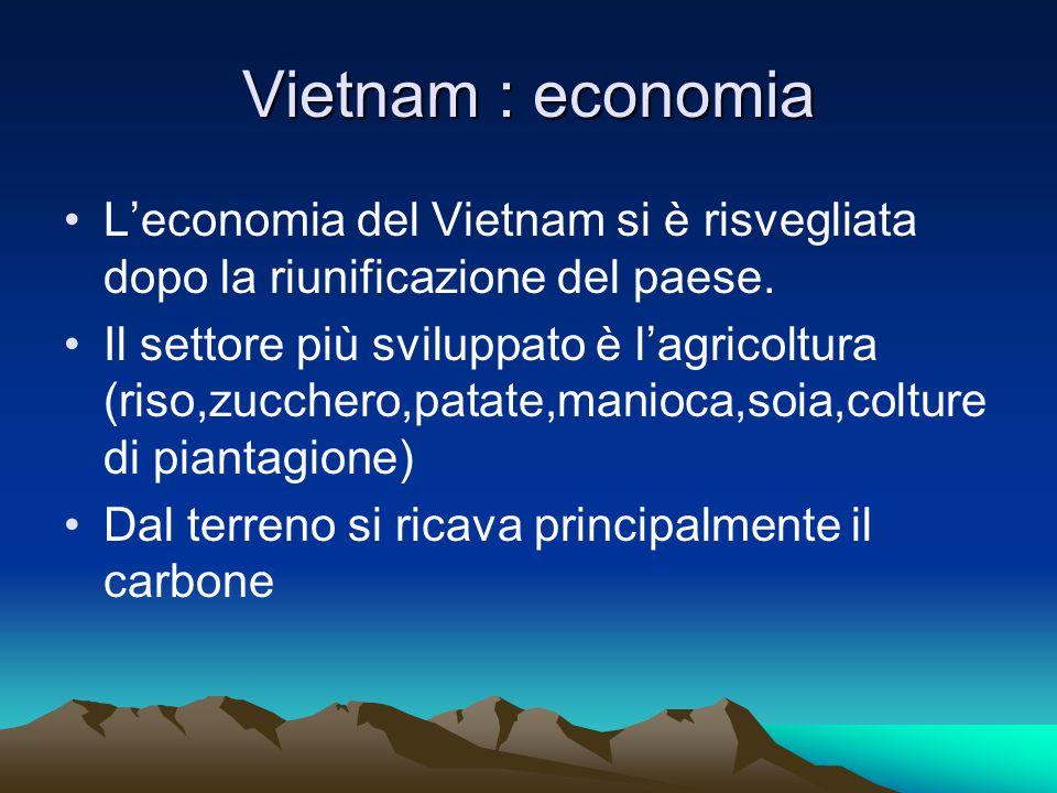 Vietnam : economia L'economia del Vietnam si è risvegliata dopo la riunificazione del paese.