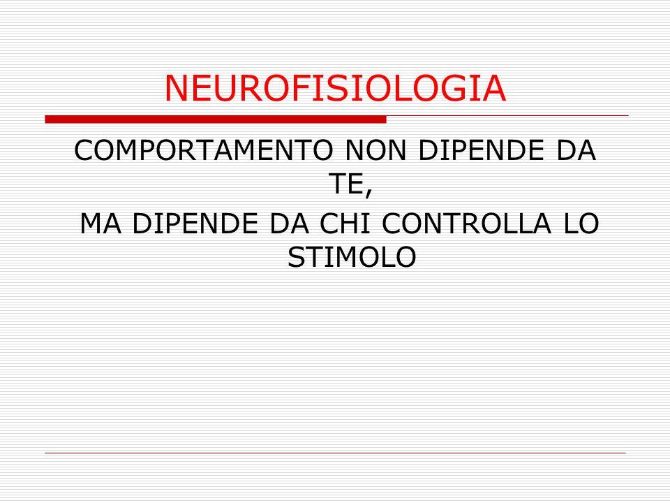 NEUROFISIOLOGIA COMPORTAMENTO NON DIPENDE DA TE, MA DIPENDE DA CHI CONTROLLA LO STIMOLO