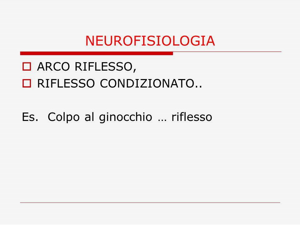 NEUROFISIOLOGIA … esteso al COMPORTAMENTO UMANO… SE DAI LO STIMOLO GIUSTO NEL PUNTO GIUSTO PUOI FAR FARE QUELLO CHE TI DICO IO: L'ARCO RIFLESSO PARTE E NON LO FERMI PIU'