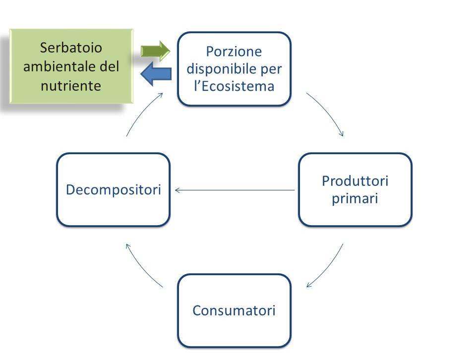 Porzione disponibile per l'Ecosistema Produttori primari ConsumatoriDecompositori Serbatoio ambientale del nutriente