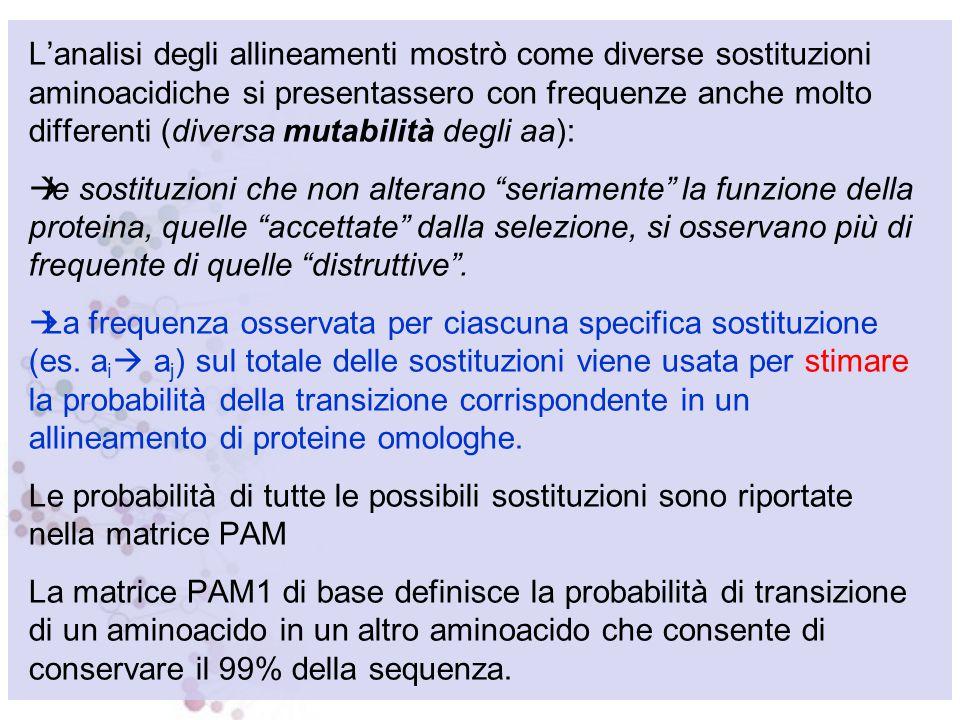 MATRICI PAM (Dayhoff et al. 1978) Sono basate sul concetto di mutazione puntiforme accettata, Point Accepted Mutation (PAM) Le prime matrici PAM sono