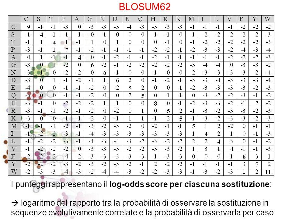 Matrici BLOSUM - Blocks Substitution Matrix (Henikoff and Henikoff, 1992) Per ridurre il contributo di coppie di amminoacidi di proteine altamente cor