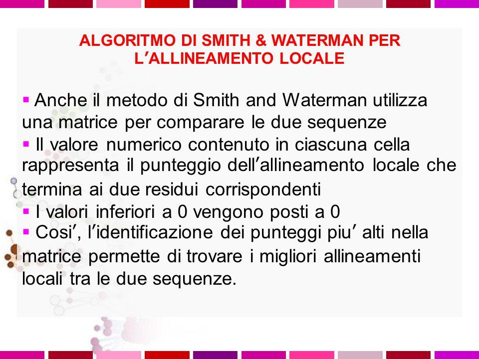 ALGORITMO DI SMITH & WATERMAN PER L'ALLINEAMENTO LOCALE Lo scopo degli algoritmi di allineamento locale di due sequenze e' trovare la regione più lung