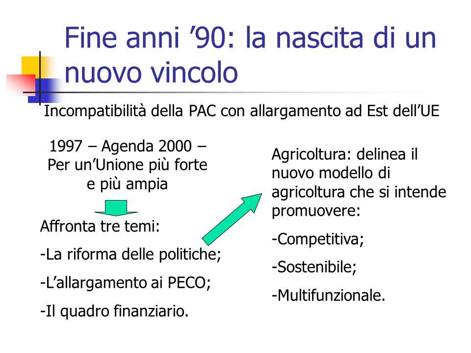 Fine anni '90: la nascita di un nuovo vincolo Incompatibilità della PAC con allargamento ad Est dell'UE 1997 – Agenda 2000 – Per un'Unione più forte e più ampia Affronta tre temi: -La riforma delle politiche; -L'allargamento ai PECO; -Il quadro finanziario.