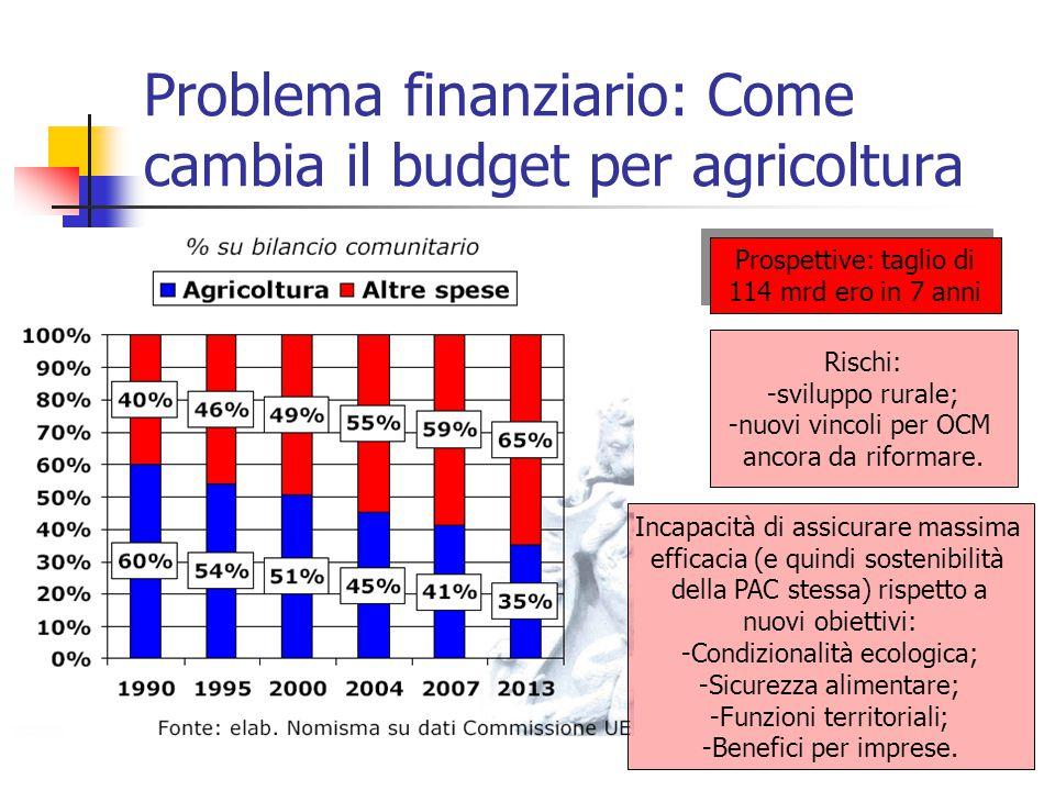 Problema finanziario: Come cambia il budget per agricoltura Prospettive: taglio di 114 mrd ero in 7 anni Rischi: -sviluppo rurale; -nuovi vincoli per OCM ancora da riformare.