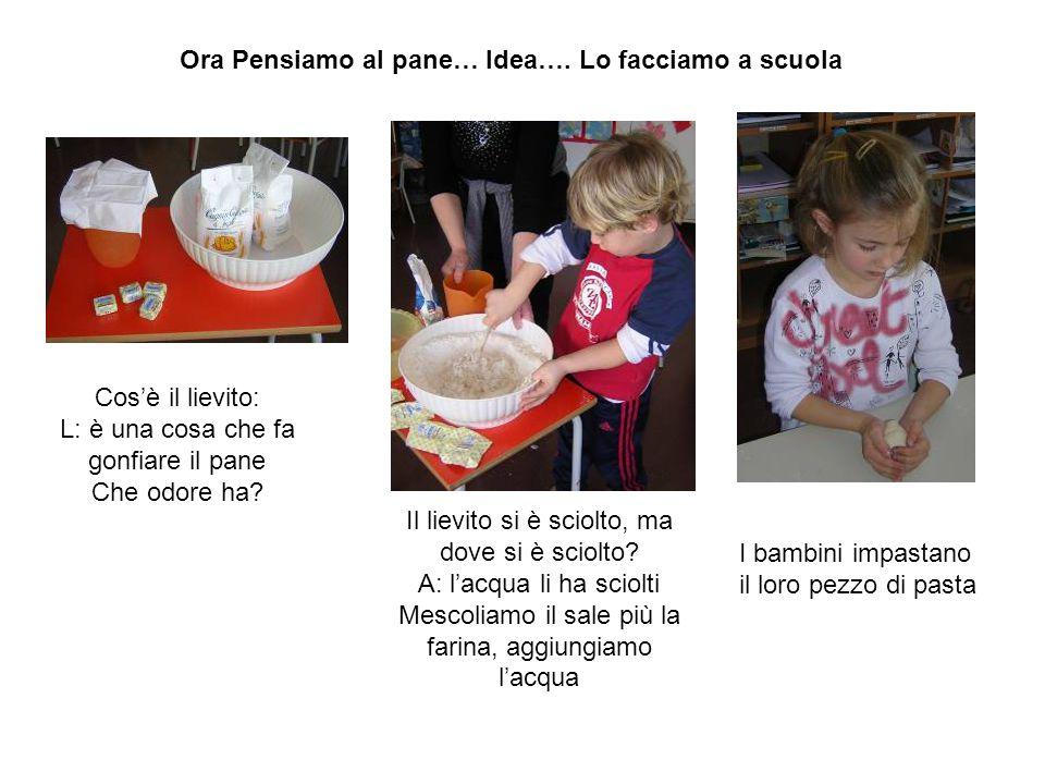 Ora Pensiamo al pane… Idea…. Lo facciamo a scuola Cos'è il lievito: L: è una cosa che fa gonfiare il pane Che odore ha? Il lievito si è sciolto, ma do