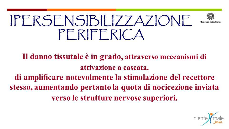 Il danno tissutale è in grado, attraverso meccanismi di attivazione a cascata, di amplificare notevolmente la stimolazione del recettore stesso, aumen