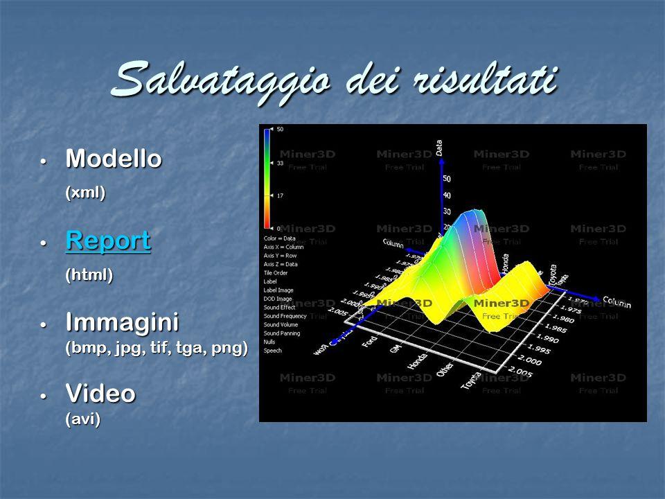 Salvataggio dei risultati Modello Modello(xml) Report Report Report (html) Immagini Immagini (bmp, jpg, tif, tga, png) Video Video(avi)