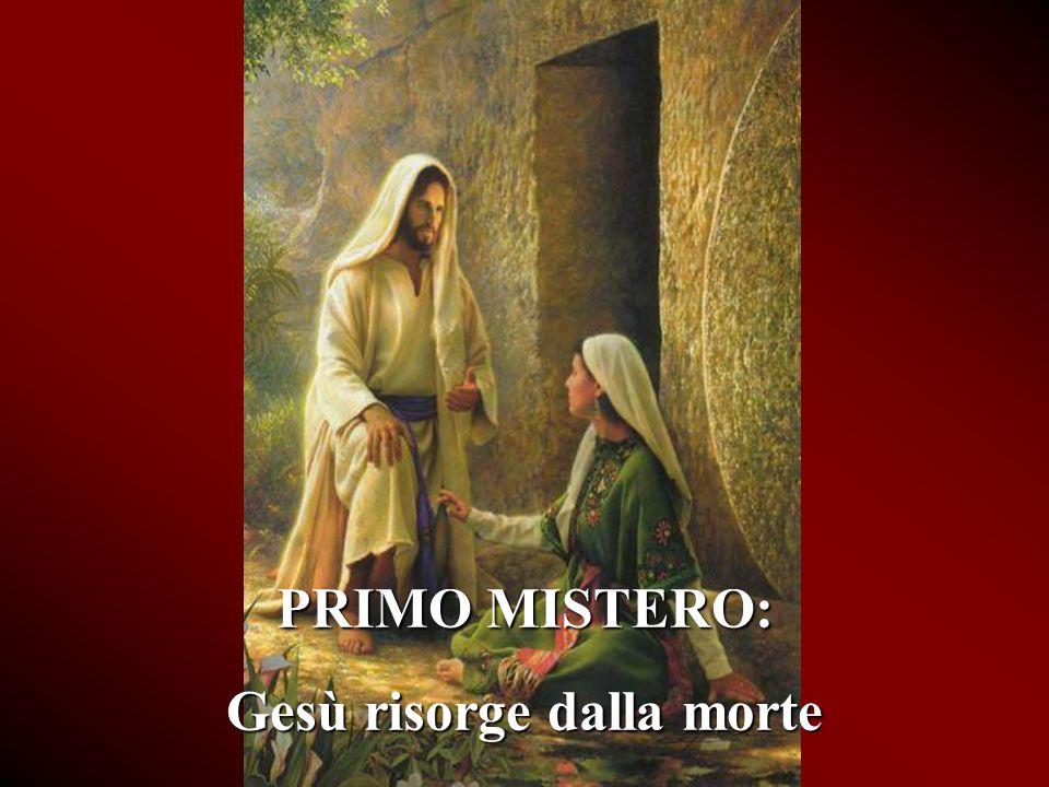 4. MISTERI GLORIOSI mercoledì e domenica transizione manuale