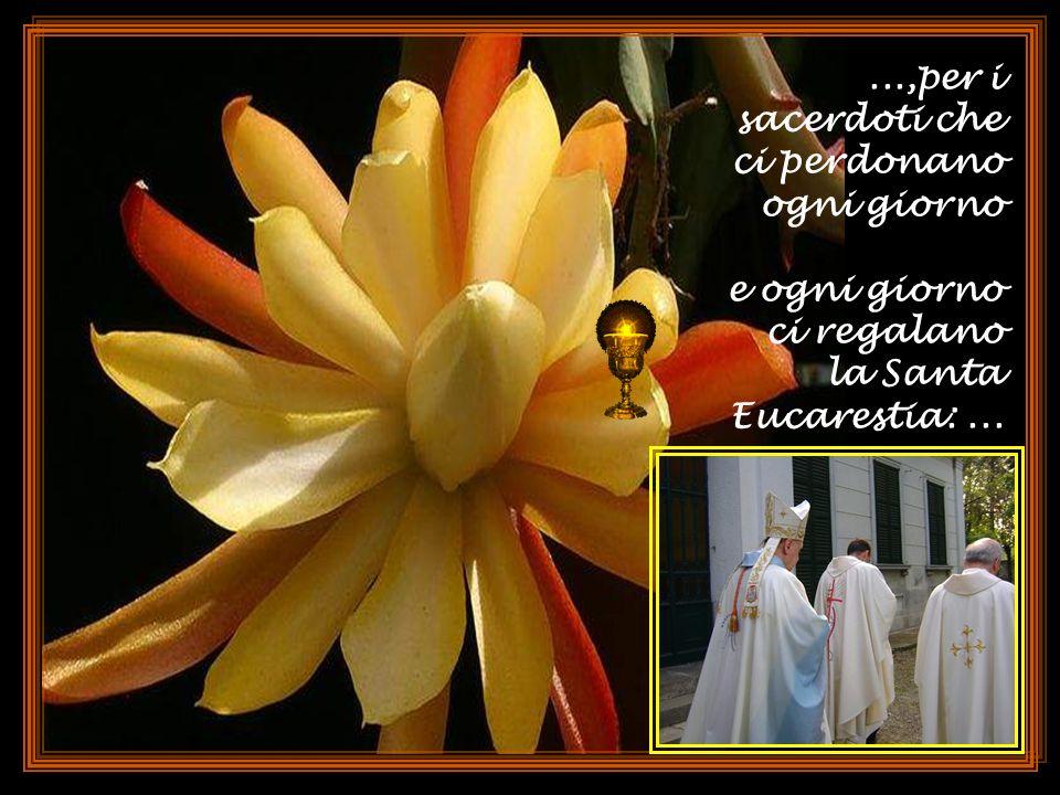 Grazie per il sacerdote che ci ha battezzato, Grazie per il sacerdote che ci ha battezzato, per il sacerdote che ci ha dato il primo perdono,...