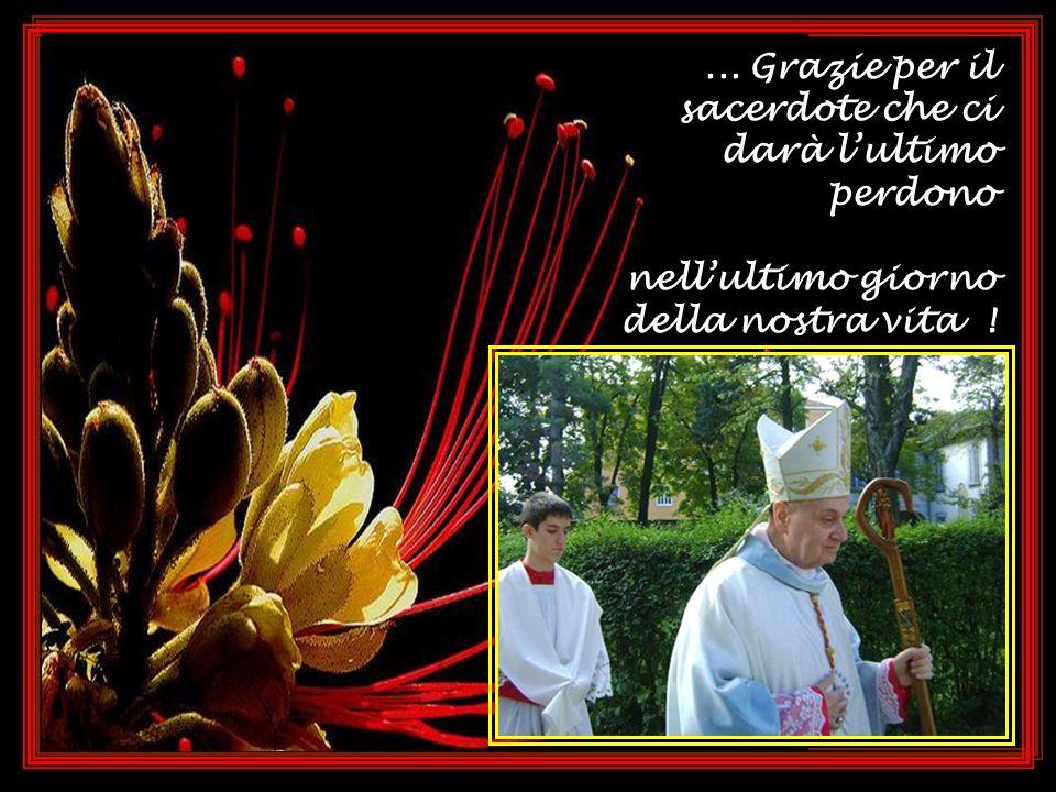 ...,per i sacerdoti che ci perdonano ogni giorno e ogni giorno ci regalano la Santa Eucarestia:...