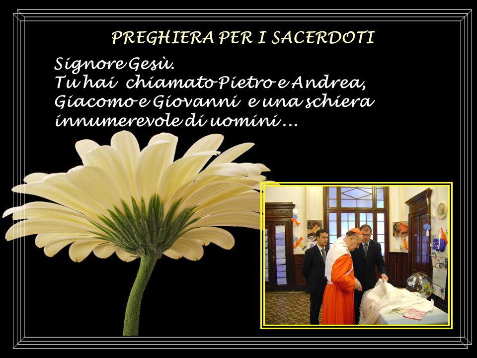 sonoro di testo di SuaEm.za Cardinal Angelo Comastri Bocelli Andrea
