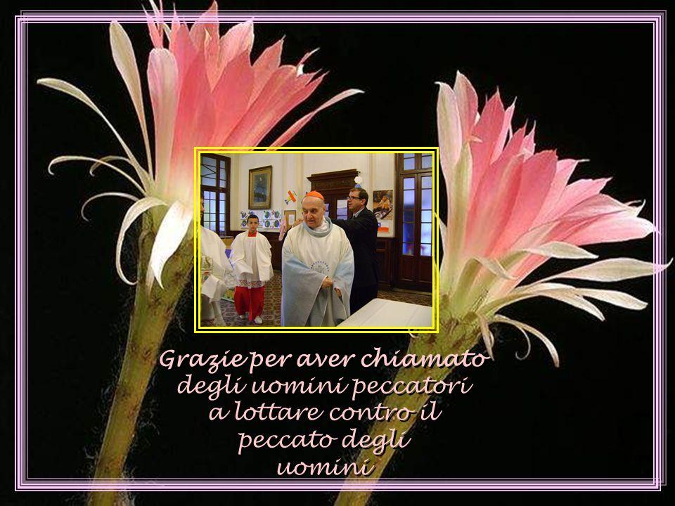 Grazie, Signore, per il dono del sacerdozio !