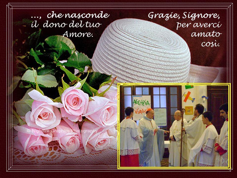 Donaci, o Signore, uno stupore inesauribile e una fede grande per accogliere questo dono,...