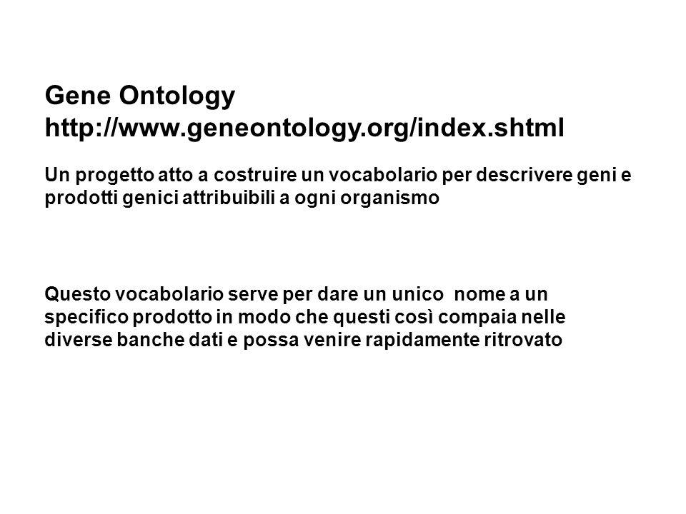 Gene Ontology http://www.geneontology.org/index.shtml Un progetto atto a costruire un vocabolario per descrivere geni e prodotti genici attribuibili a