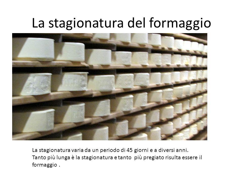 La stagionatura del formaggio La stagionatura varia da un periodo di 45 giorni e a diversi anni.