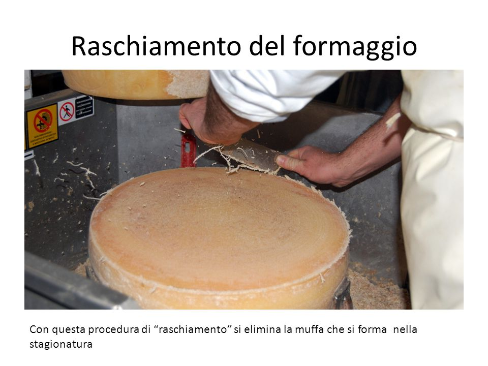 Raschiamento del formaggio Con questa procedura di raschiamento si elimina la muffa che si forma nella stagionatura