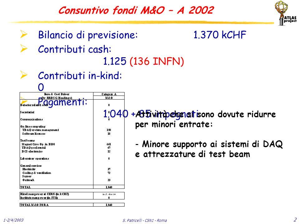 1-2/4/2003 S. Patricelli - CSN1 - Roma 33 C & I - Muoni Consuntivo 2002