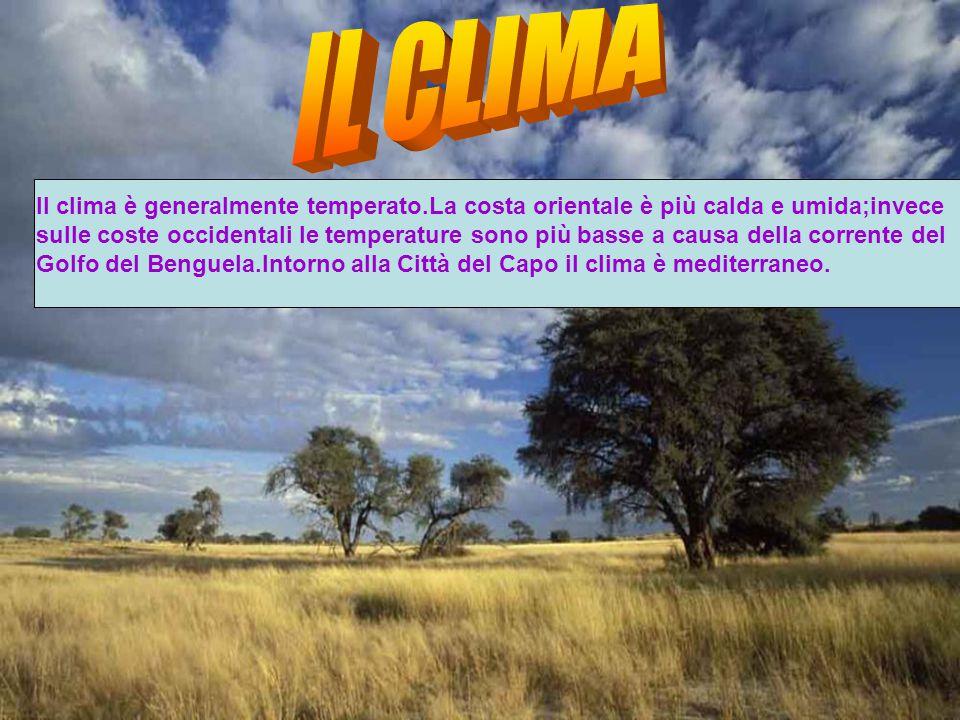 Il clima è generalmente temperato.La costa orientale è più calda e umida;invece sulle coste occidentali le temperature sono più basse a causa della corrente del Golfo del Benguela.Intorno alla Città del Capo il clima è mediterraneo.
