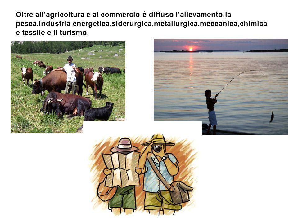 Oltre all'agricoltura e al commercio è diffuso l'allevamento,la pesca,industria energetica,siderurgica,metallurgica,meccanica,chimica e tessile e il turismo.