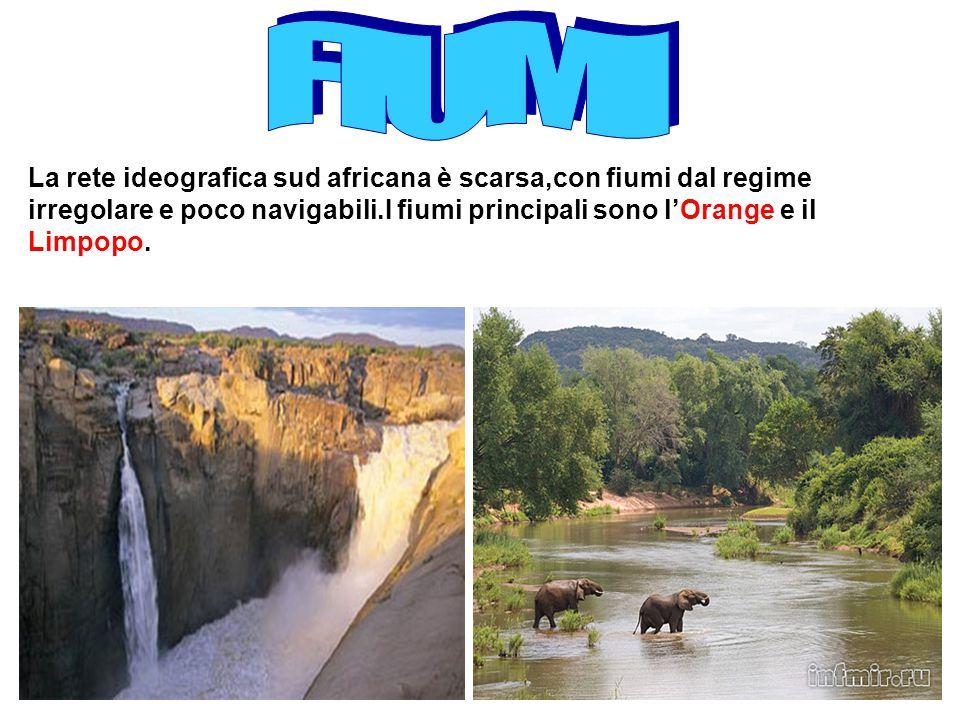 La rete ideografica sud africana è scarsa,con fiumi dal regime irregolare e poco navigabili.I fiumi principali sono l'Orange e il Limpopo.