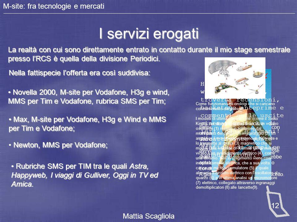 M-site: fra tecnologie e mercati Mattia Scagliola 12 I servizi erogati La realtà con cui sono direttamente entrato in contatto durante il mio stage se