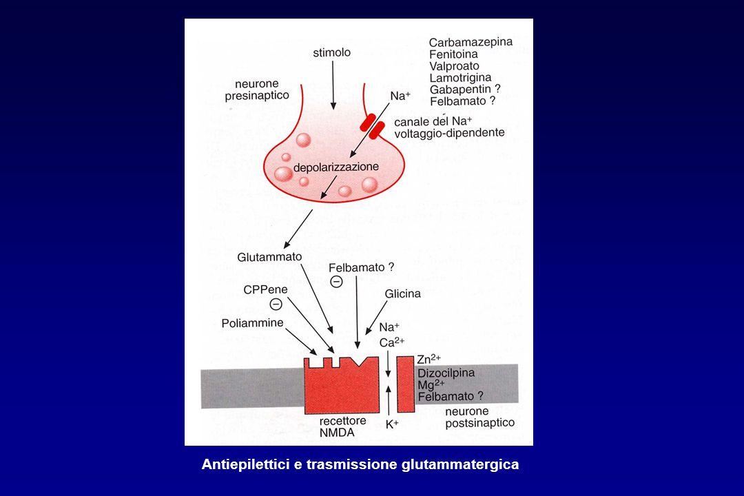 Antiepilettici e trasmissione glutammatergica
