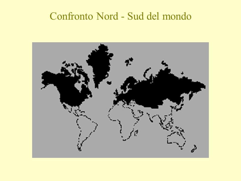 Confronto Nord - Sud del mondo