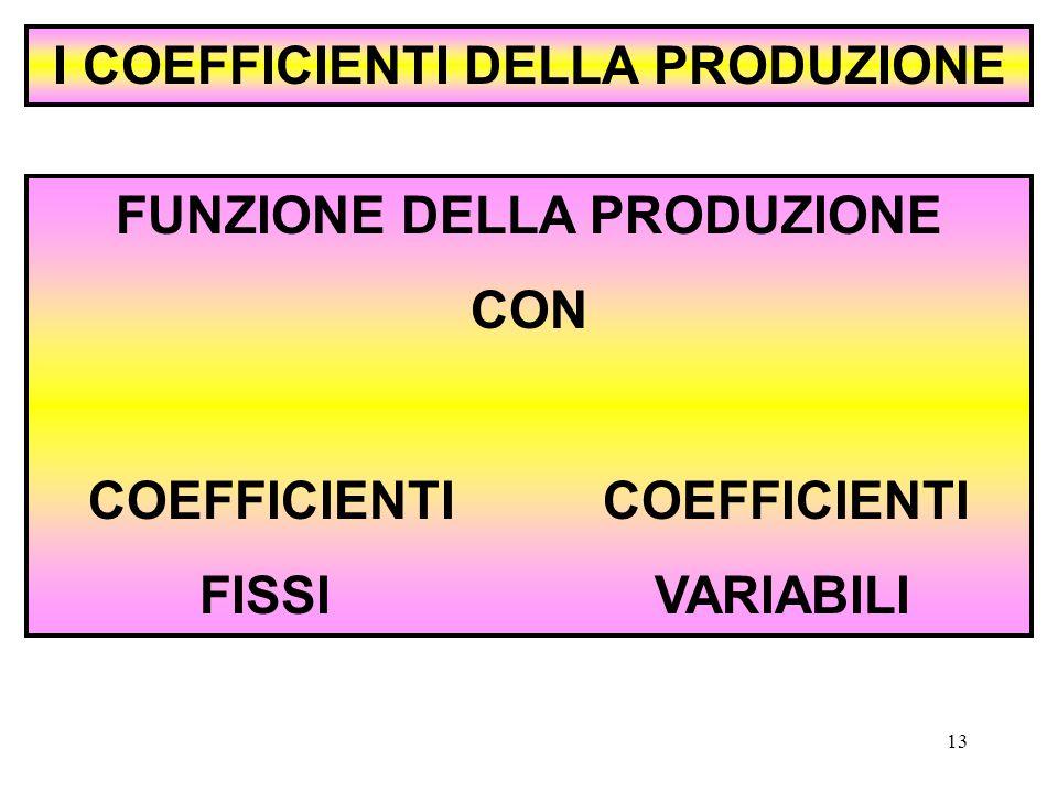 13 I COEFFICIENTI DELLA PRODUZIONE FUNZIONE DELLA PRODUZIONE CON COEFFICIENTI FISSI VARIABILI