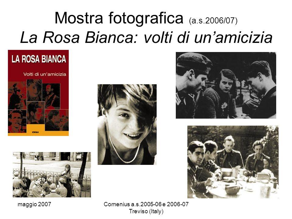 maggio 2007Comenius a.s.2005-06 e 2006-07 Treviso (Italy) Mostra fotografica (a.s.2006/07) La Rosa Bianca: volti di un'amicizia