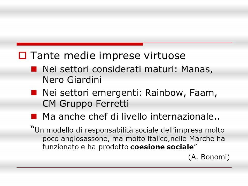  Tante medie imprese virtuose Nei settori considerati maturi: Manas, Nero Giardini Nei settori emergenti: Rainbow, Faam, CM Gruppo Ferretti Ma anche
