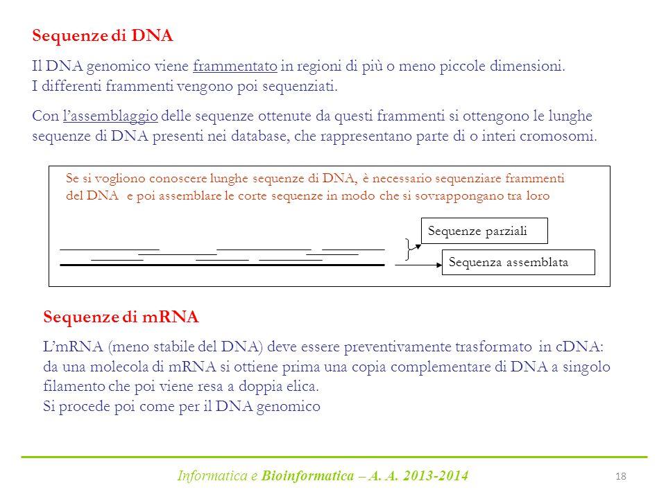 Informatica e Bioinformatica – A. A. 2013-2014 18 Sequenze di DNA Il DNA genomico viene frammentato in regioni di più o meno piccole dimensioni. I dif