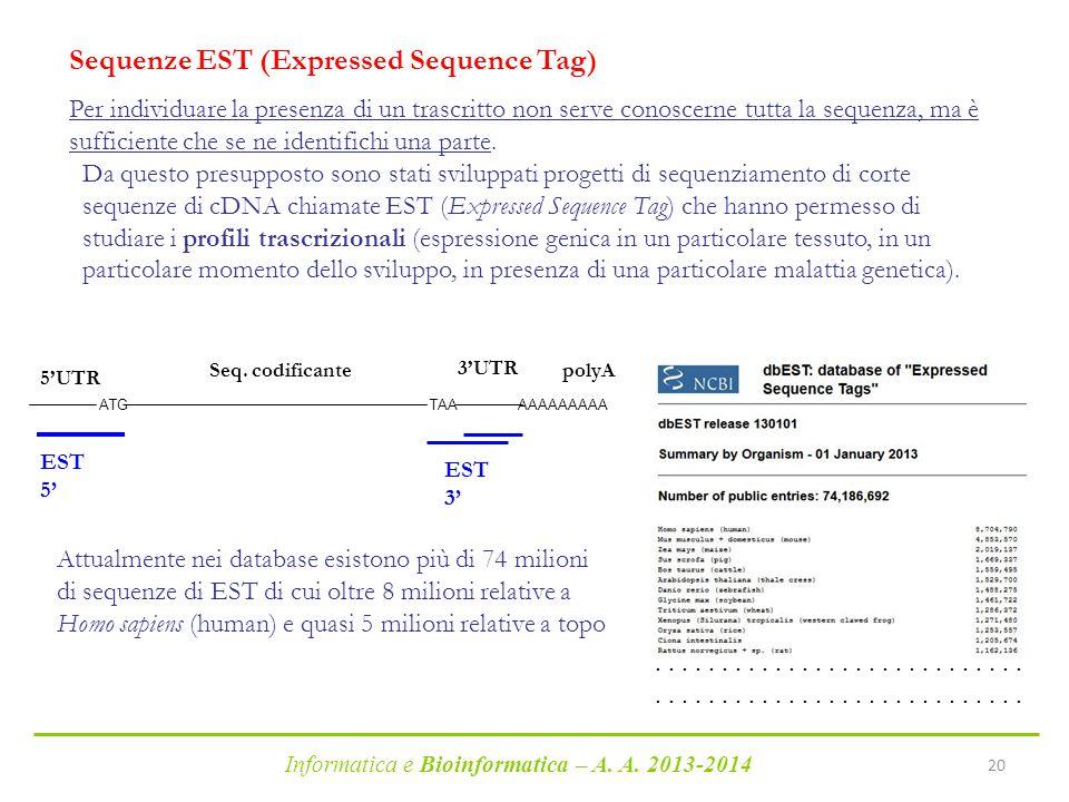 Informatica e Bioinformatica – A. A. 2013-2014 20 Sequenze EST (Expressed Sequence Tag) Per individuare la presenza di un trascritto non serve conosce