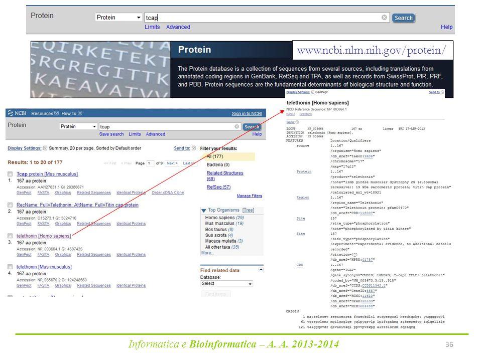 Informatica e Bioinformatica – A. A. 2013-2014 36 www.ncbi.nlm.nih.gov/protein/