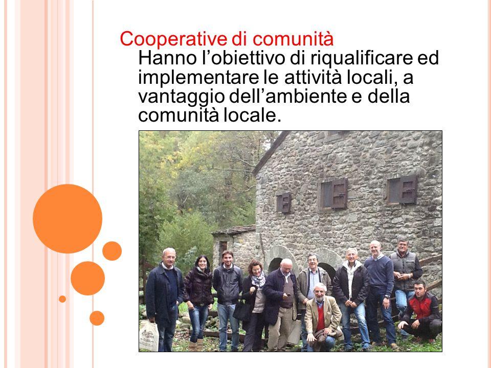 Cooperative di comunità Hanno l'obiettivo di riqualificare ed implementare le attività locali, a vantaggio dell'ambiente e della comunità locale.