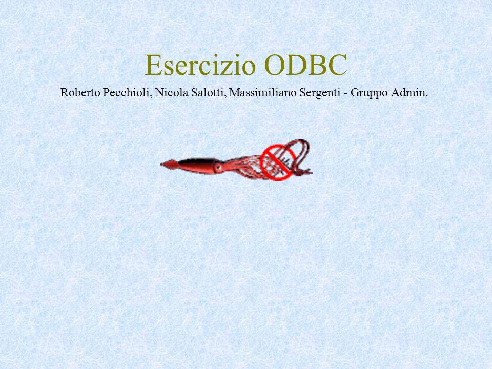 Esercizio ODBC Roberto Pecchioli, Nicola Salotti, Massimiliano Sergenti - Gruppo Admin.